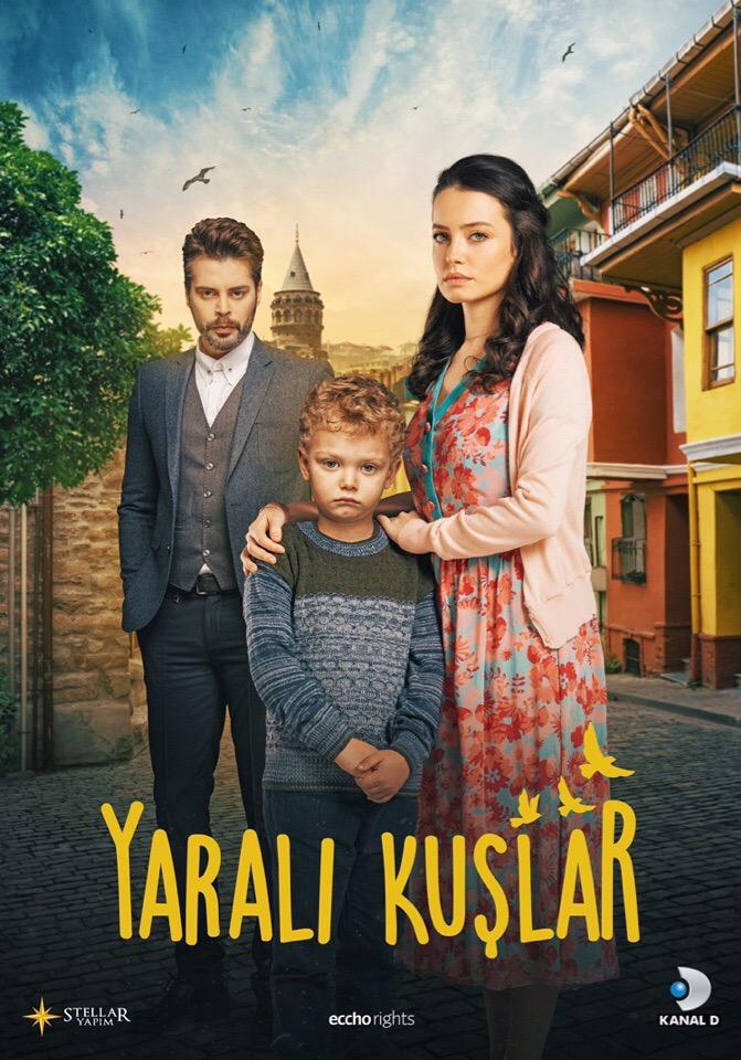 Сериал Раненые птицы ~ Yaralı Kuşlar (Турция)
